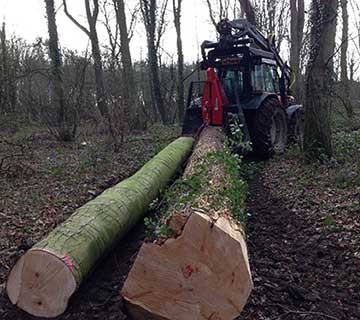 All-Seasons-Forestry-Extraction-Gloucestershire
