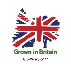 GiB logo with license no.